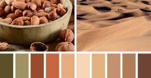 הצבעים שלנו