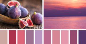 הצבעים שלנו מניפת גוונים נדיר