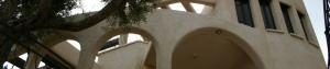 שימוש בקיר חיצוני בגפן
